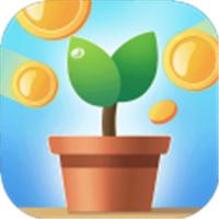 阳光养金屋赚钱app